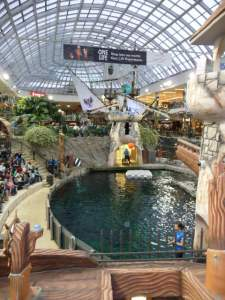 sat 11 jan edmonton mall trip (22)